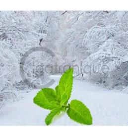 Arôme blizzard lorliquide